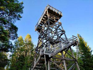 På Bergåsen i Borgsjö finns det ett gammalt brandtorn med vacker utsikt över Borgsjön