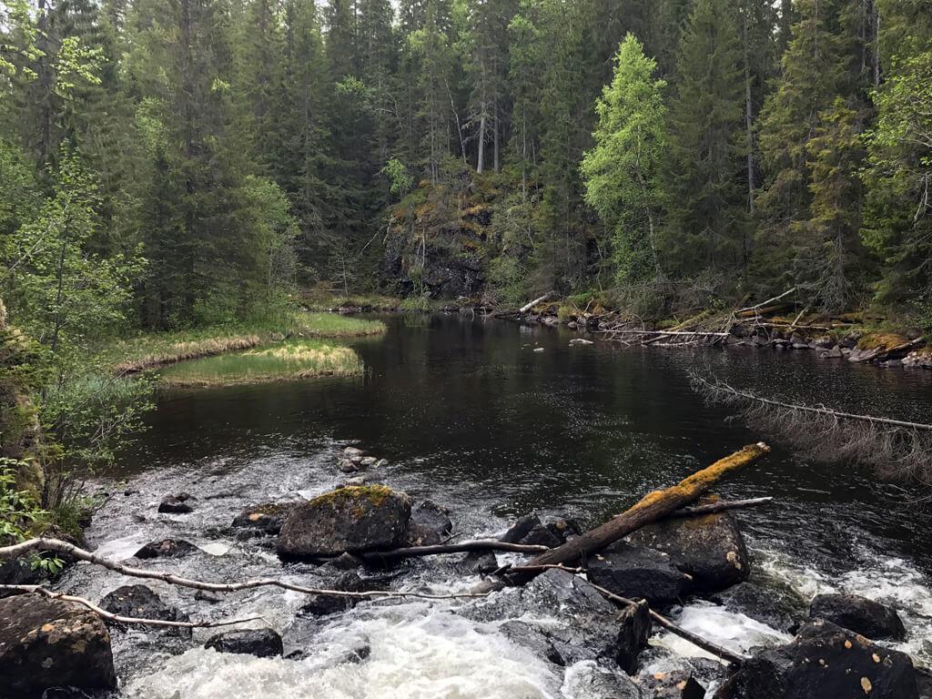 Vattenfallet vid namn Brattfallet i naturreservatet Vattenån nordväst om Ånge.